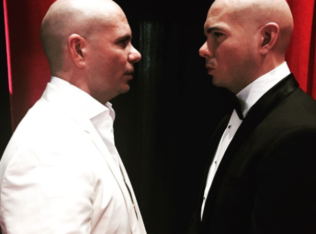 Pitbull Madame Tussauds
