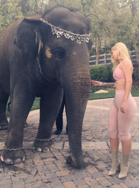 Iggy Azalea and an Elephant